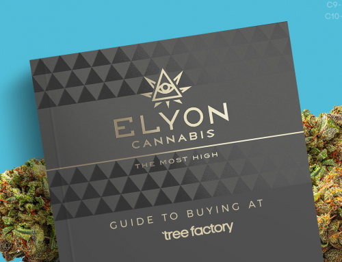 Elyon Cannabis Guide: Affordable And Delicious Flower From California's Sonoma County