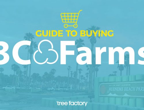 The Complete Guide To Buying 3C Farms At Tree Factory